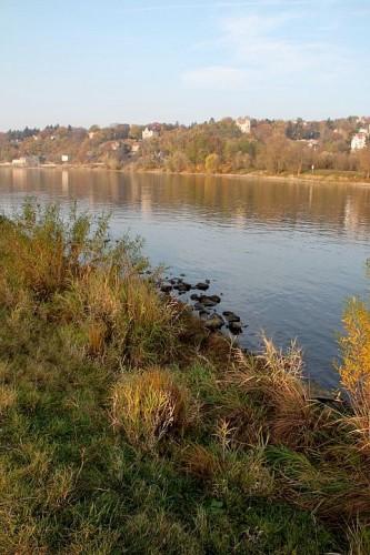 dresden, automne, week-end, sachsen, blasewitz, blaues wunder, promenade