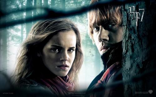 Harry-Potter-7-Deathly-Hallows-2103.jpg