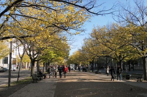 Un an de mariage à Berlin 23-10-10 (27).JPG