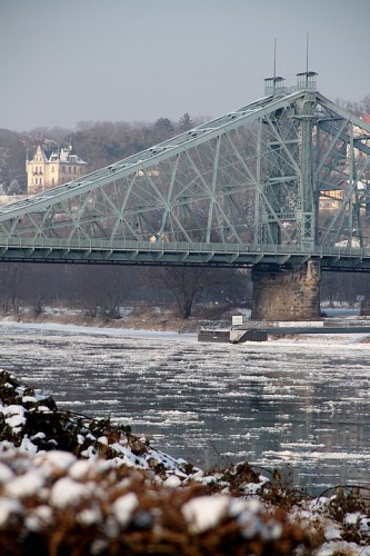 dresden, allemagne, saxe, elbe, balade, promenade, neige, givre, glace, animaux, blaues wunder