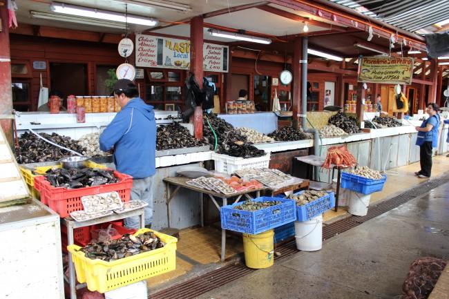 chili,voyage,valparaiso,puerto varas,viña del mar,puerto montt,angelmo