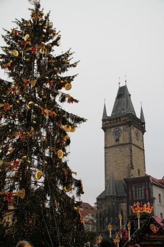 voyage, prague, république tchèque, praha, prag,noël, décembre, sapin, église, crèche